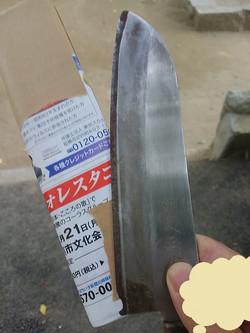 Kimg5288